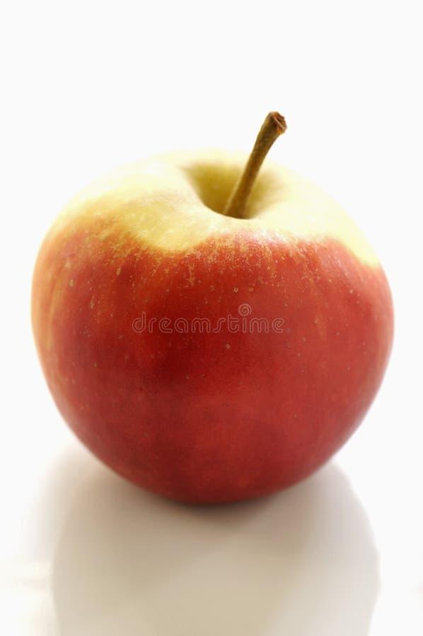 Elstar Apfel lizenzfreies stockbild