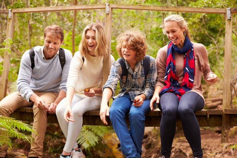Eltern und Teenagerspielen, sitzend auf einer Brücke in einem Wald lizenzfreie stockfotos
