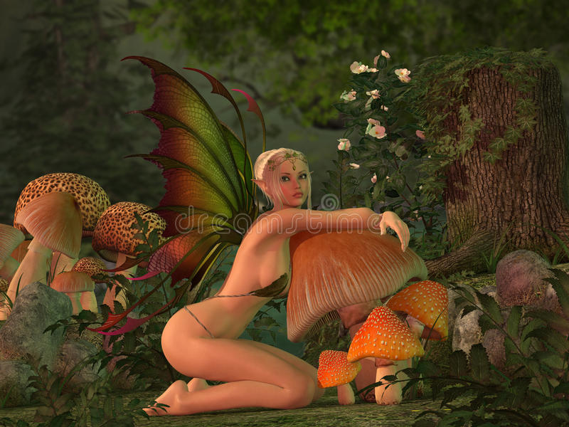 Elven beautiful woman in fairytale forest stock images