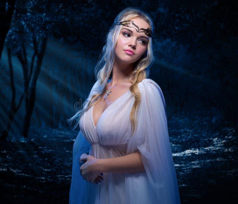 Elven-Mädchen im Nachtwald stockfotografie