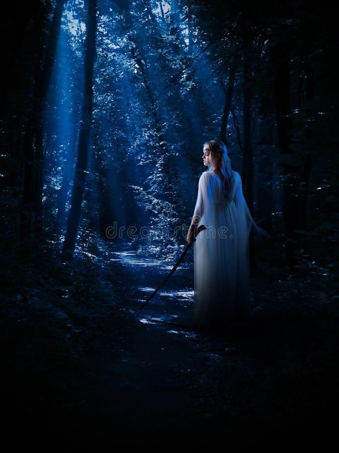 Elven-Mädchen am Nachtwald stockfotografie