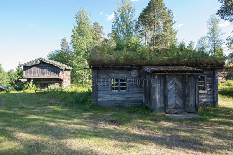 Elverum, Noorwegen stock foto's