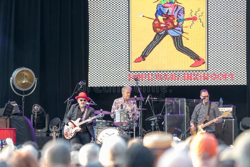 Elvis Costello & bedragarna på centrala Park's SummerStage - 6/15/2017 royaltyfri fotografi