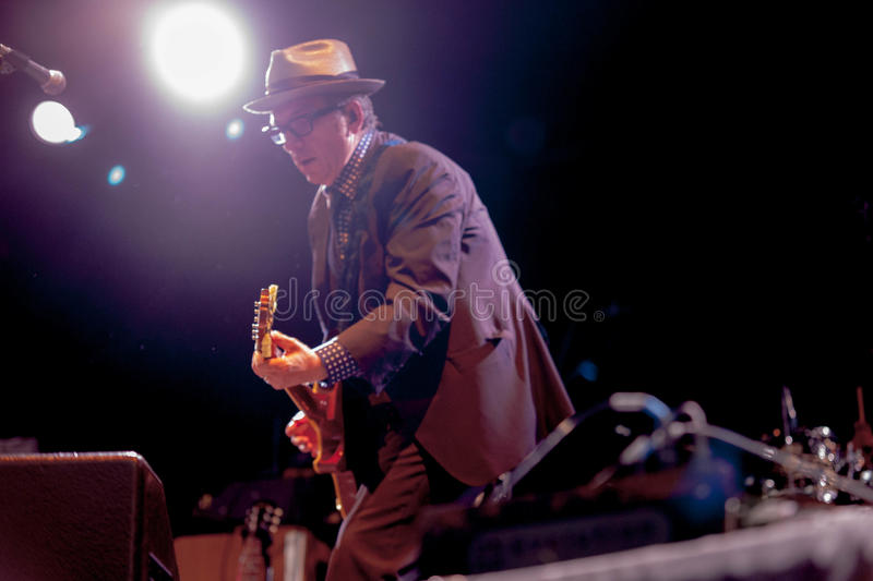 Elvis Costello(6) stock images