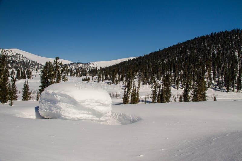 Ely auf dem Hintergrund von einer ausgezeichneten Berglandschaft lizenzfreie stockbilder