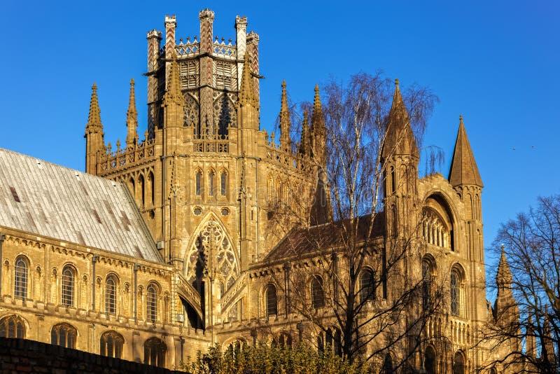 ELY, CAMBRIDGESHIRE/UK - LISTOPAD 23: Zewnętrzny widok Ely Cath zdjęcie royalty free