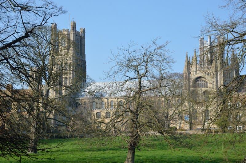 Ely Cathedral door bomen royalty-vrije stock afbeelding