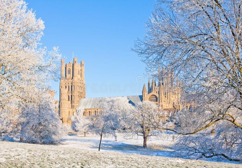 Ely katedra w pogodnym zima dniu obraz stock