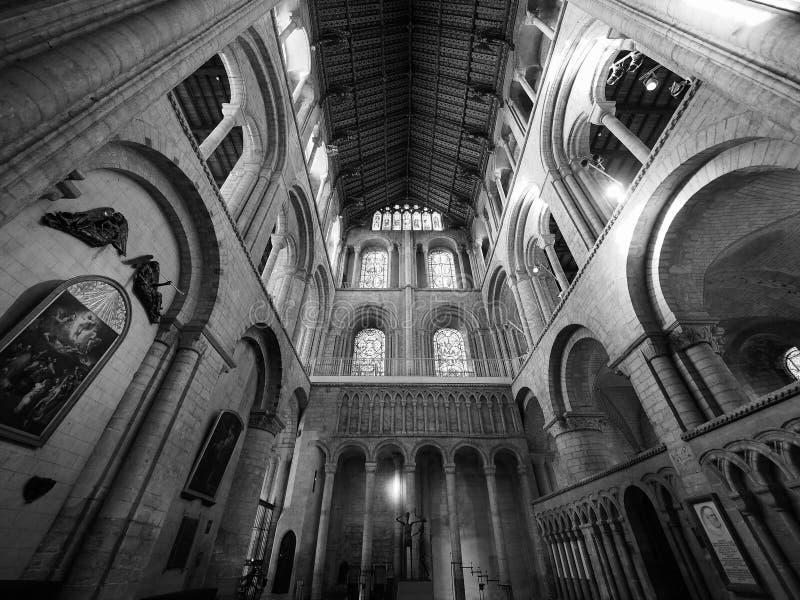 Ely Katedralny wnętrze w czarny i biały fotografia stock