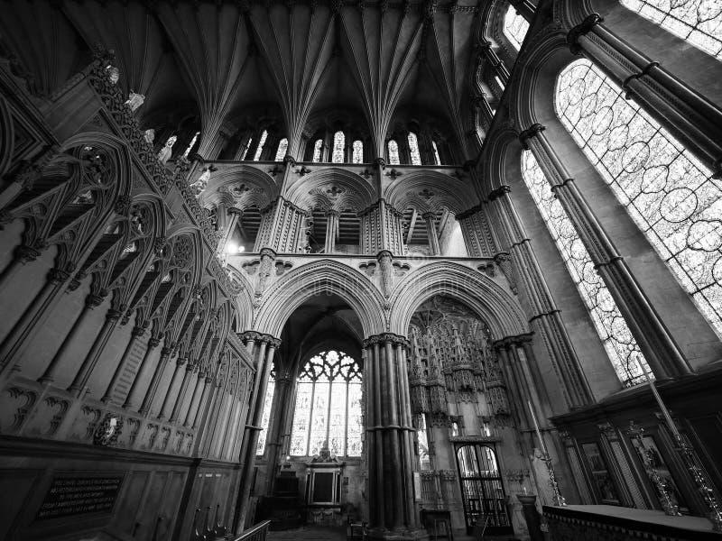 Ely Katedralny wnętrze w czarny i biały zdjęcia royalty free