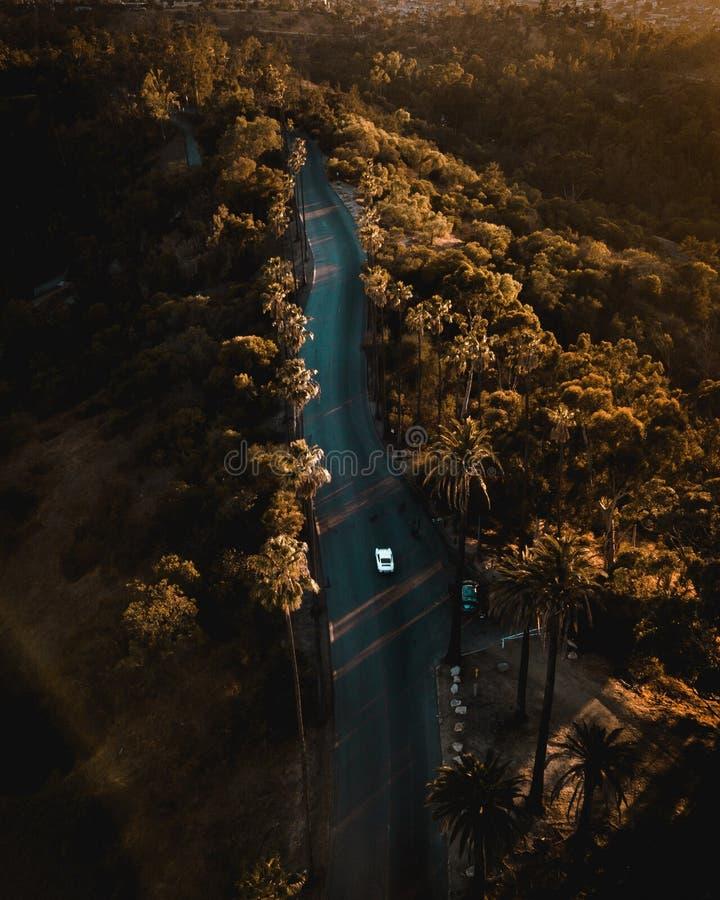 Elyseiskt parkera gömma i handflatan fotografering för bildbyråer