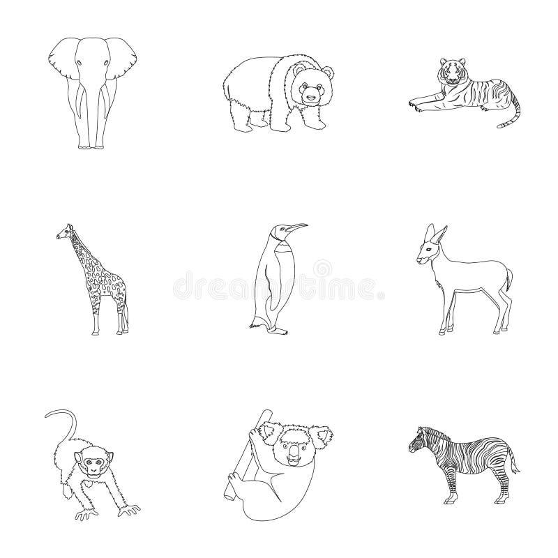 Emú de la avestruz, cocodrilo, jirafa, tigre, pingüino y otros animales salvajes Artiodactyla, depredadores mamíferos y animales ilustración del vector