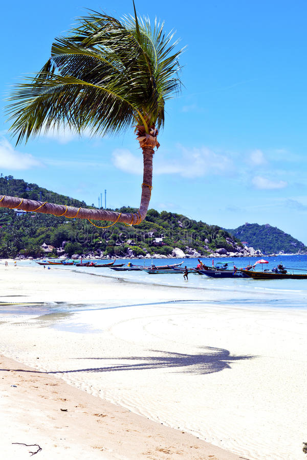 em Ásia da baía de tao Tailândia do kho a ilha balança imagem de stock royalty free