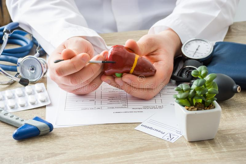 Em doutores o médico da nomeação mostra à forma paciente do fígado com foco disponível com órgão O paciente de explicação da cena fotografia de stock royalty free