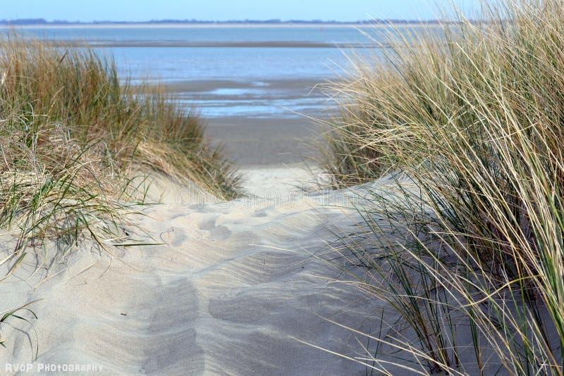 Em minha maneira à praia - os Países Baixos imagens de stock