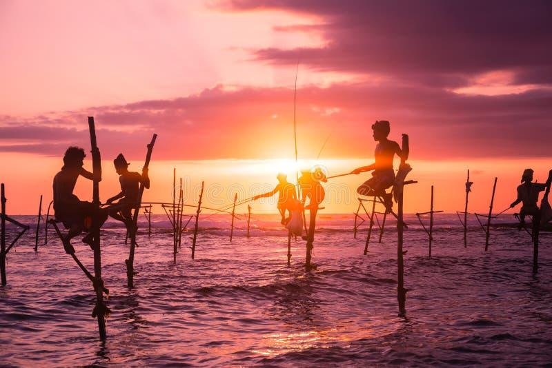 Em Sri Lanka, um pescador local está pescando no estilo original na noite foto de stock