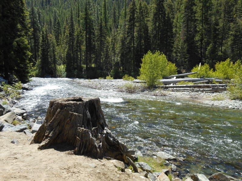 Em torno da curvatura do rio fotos de stock
