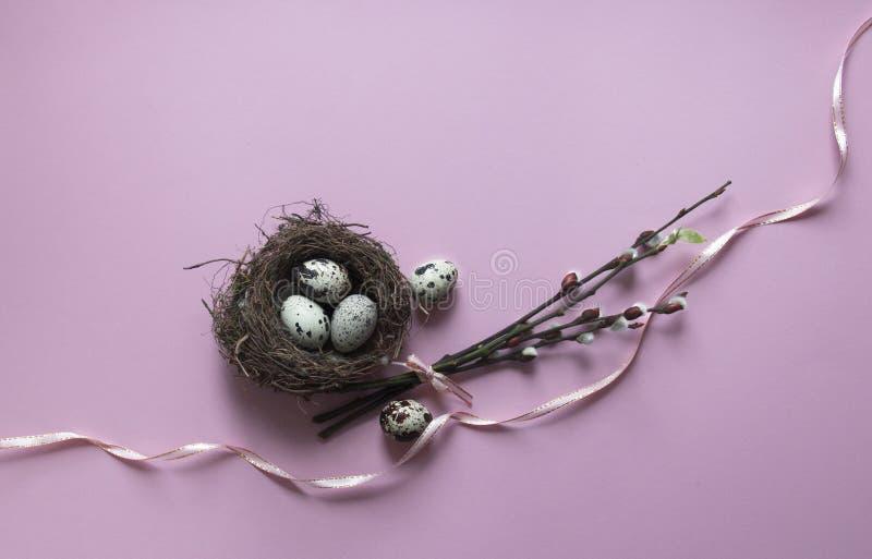 Em um fundo cor-de-rosa, os ramos do salgueiro floresceram ninho verde das codorniz dos ovos da folha com opinião de cor de três  fotografia de stock