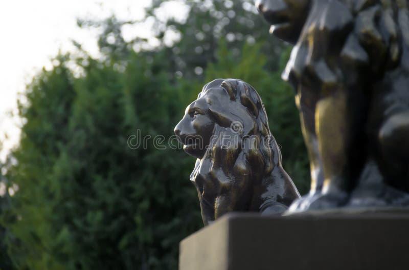 Em um fundo da escultura da estatueta do perfil do leão do bokeh das árvores da natureza os pares bronzeiam o espaço da cópia do  imagem de stock royalty free