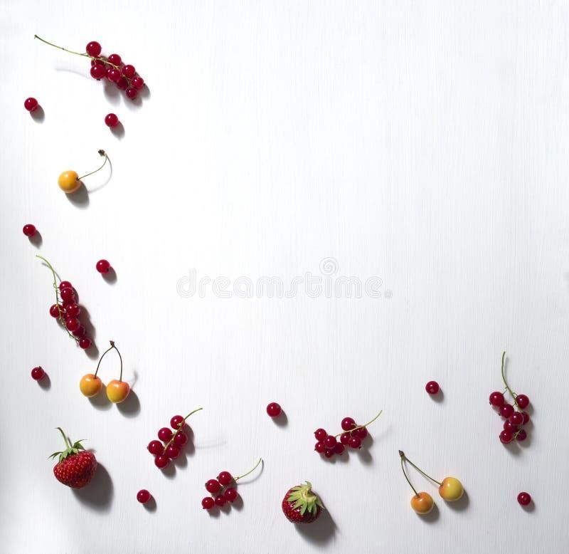 Em um quadro branco do fundo com a borda e de baixo do teste padrão vermelho do branco da cereja da morango do corinto das bagas  fotos de stock royalty free