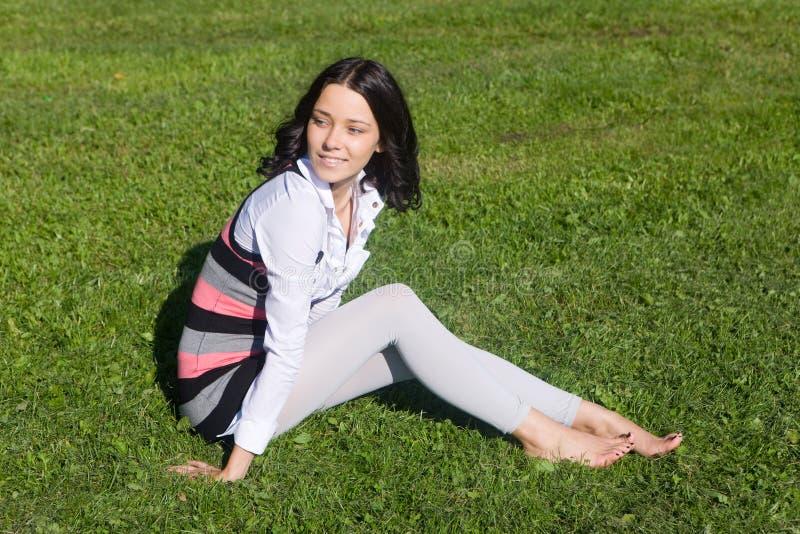 Em uma grama verde imagem de stock