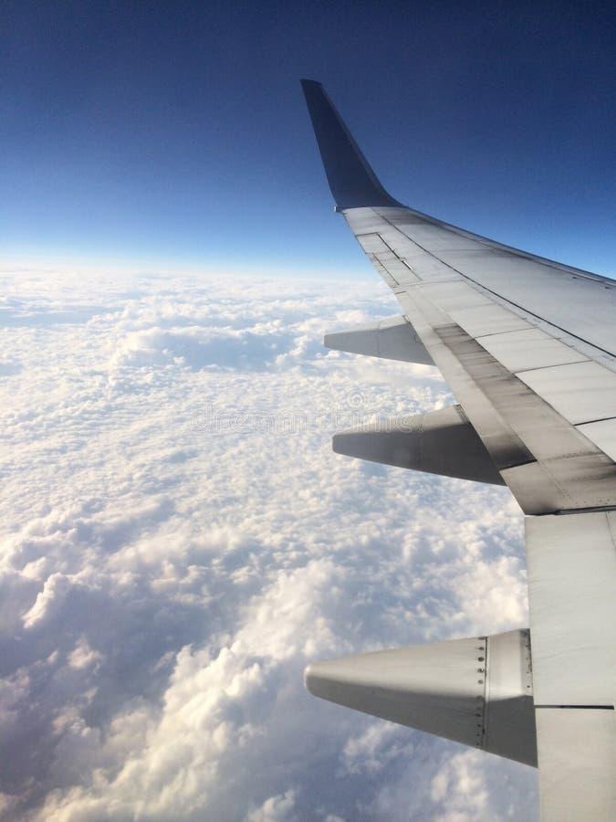 Em voo imagens de stock