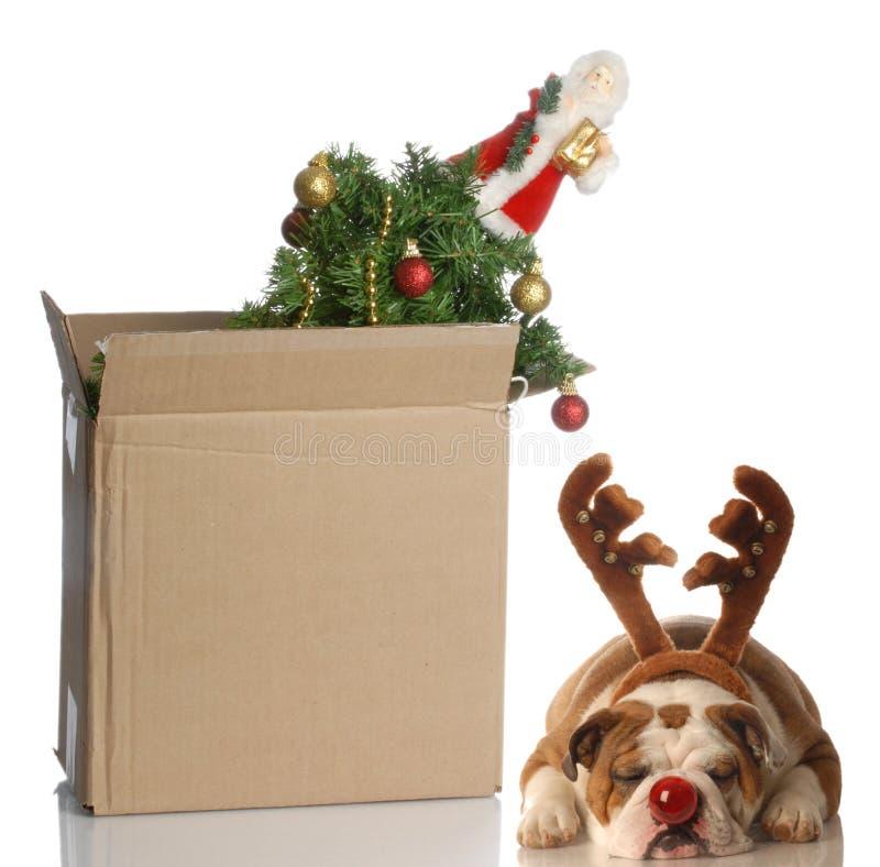 Embalagem acima do Natal fotos de stock