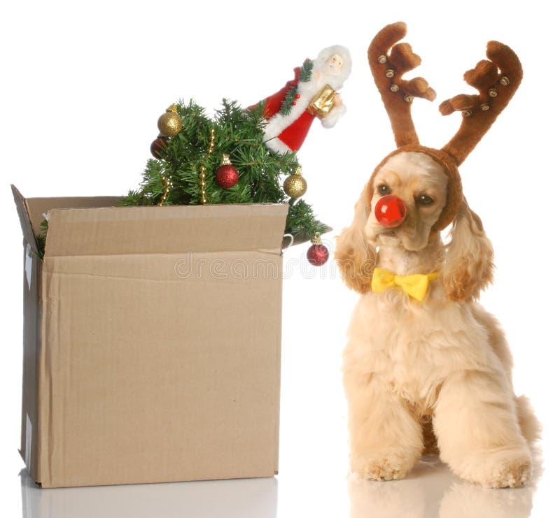 Embalagem acima do Natal foto de stock