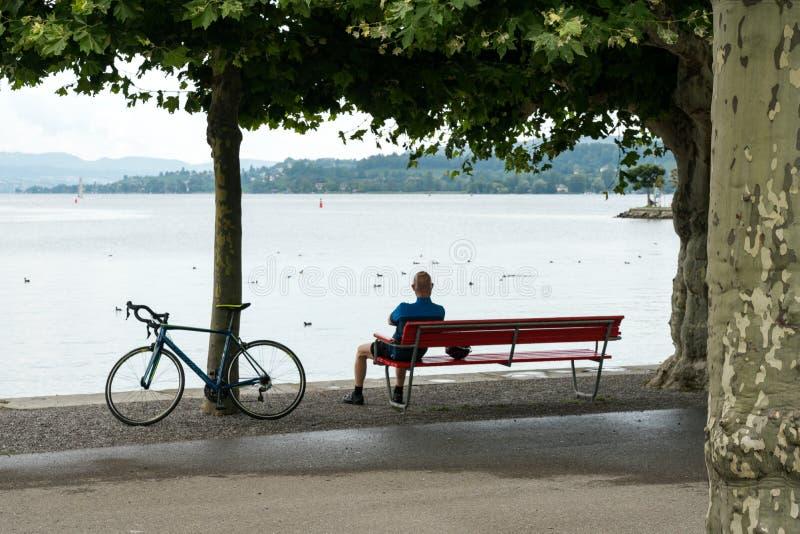 Emballage du vélo se penchant contre un arbre tandis que le cycliste d'homme fait une pause et apprécie la vue de lac photos libres de droits