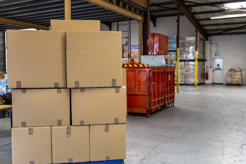 Emballage- och exportlagring med kungligt, lådan och gaffeltrucken royaltyfria bilder