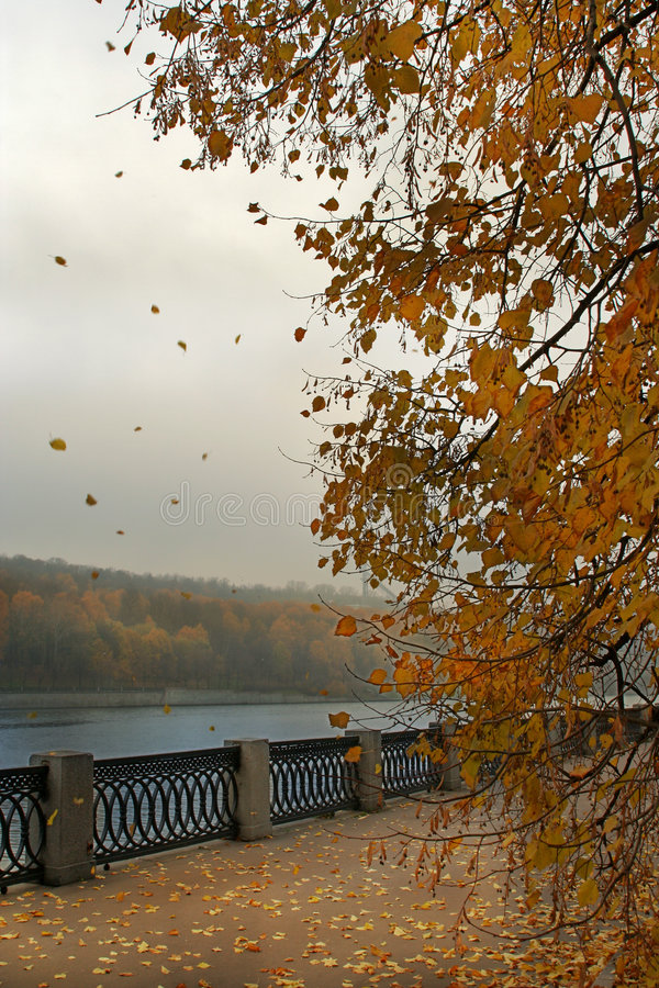 Embankment on autumn royalty free stock image