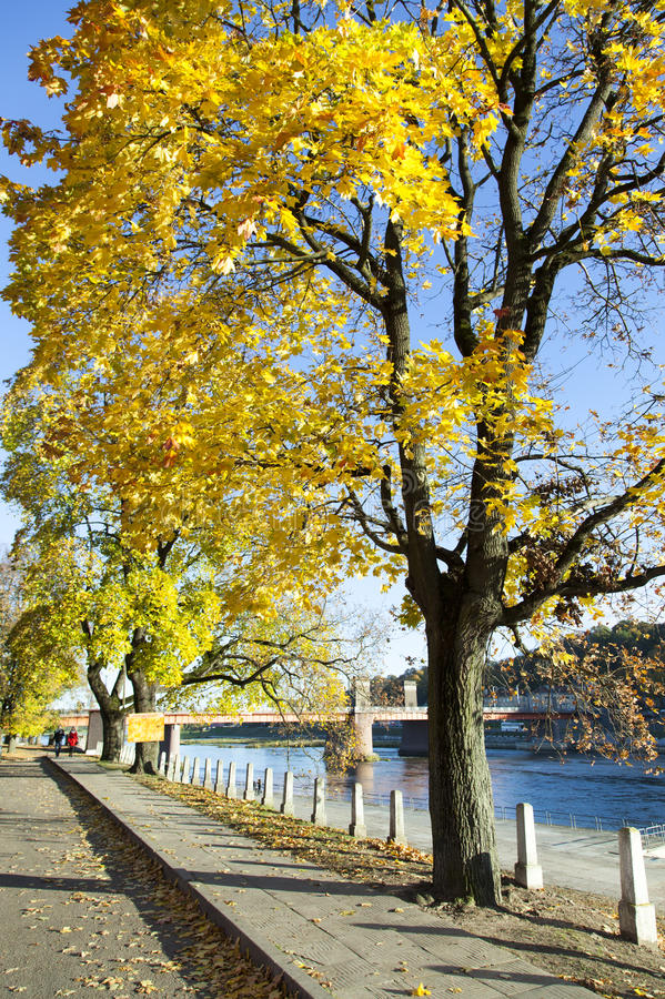 Embankment Autumn Colors royalty free stock photo