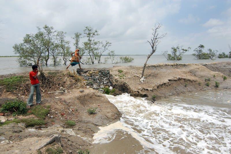 Embankment Problem In Sundarban Editorial Stock Image