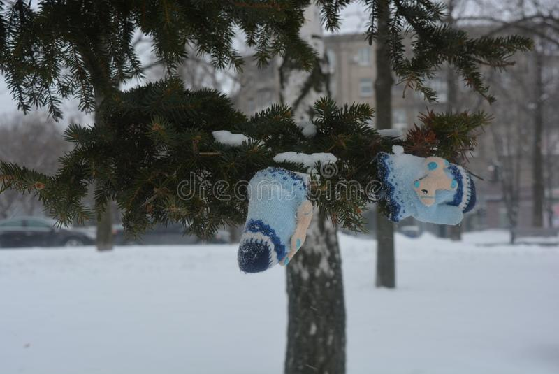 On the embankment of the river Dnipro stands a Christmas tree with children`s gloves on it in the snow, in winter in cold weather stock images