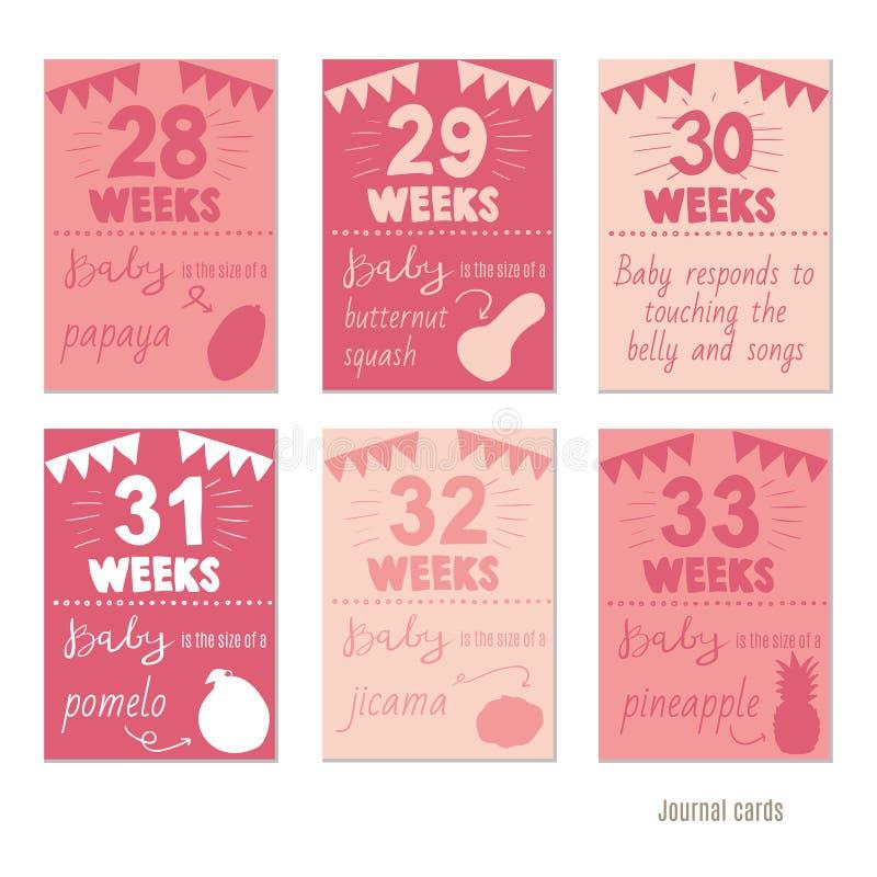 Embarazo 28 33 plantillas del dise o del vector de las - 28 semanas de embarazo cuantos meses son ...