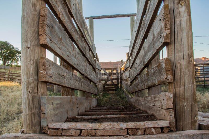 Embarcadero común de madera foto de archivo