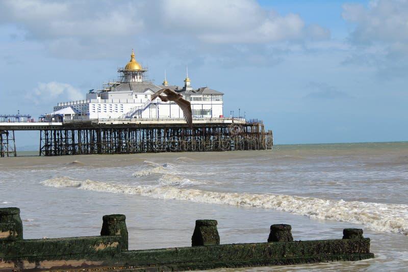 Embarcadero de Eastbourne fotos de archivo libres de regalías