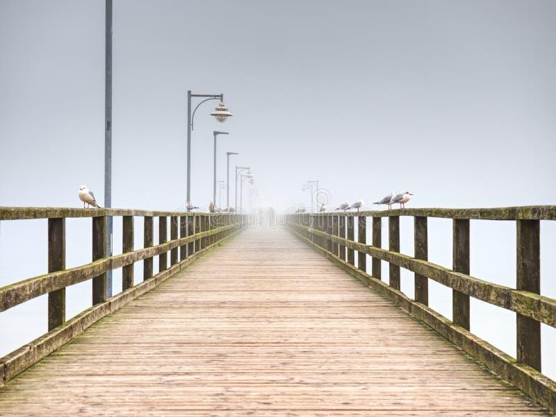 Embarcadero de madera del océano de la ciudad para el turista contra el cielo del misyt Destinación del recorrido imágenes de archivo libres de regalías