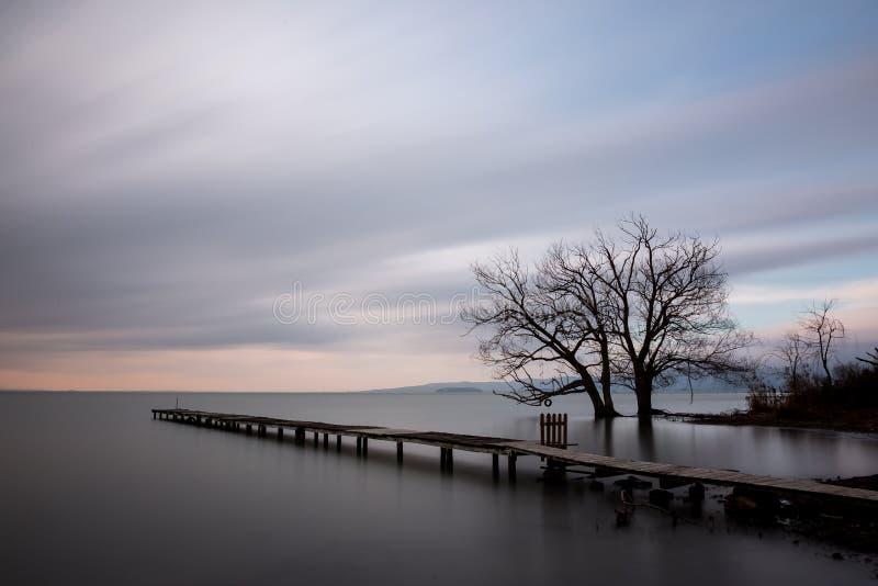 Embarcadero y árboles fotografía de archivo