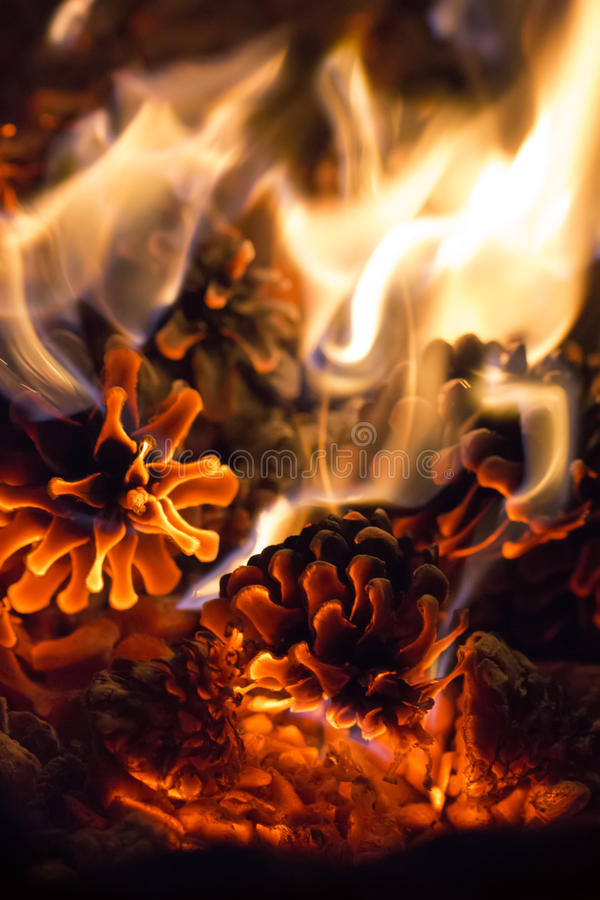 Embers of pine cones romantic fire soft background stock photography