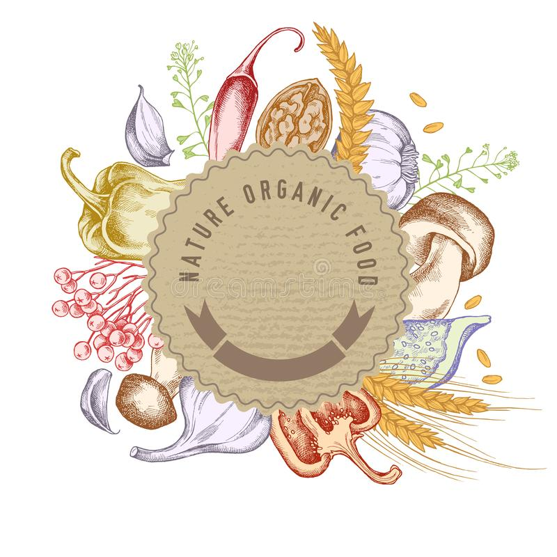 Emblème de papier rond au-dessus de nourriture d'automne Illustration tirée par la main de vecteur illustration de vecteur