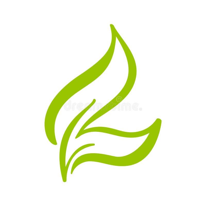 Embleem van groen blad van thee Het elementen vectorpictogram van de ecologieaard Bio de kalligrafiehand getrokken illustratie va vector illustratie