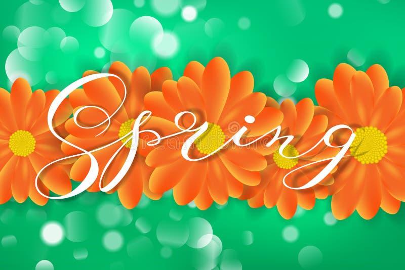 Embleem van het de lente het van letters voorziende ontwerp Decoratief typografieelement met bloemen op groene achtergrond met bo vector illustratie