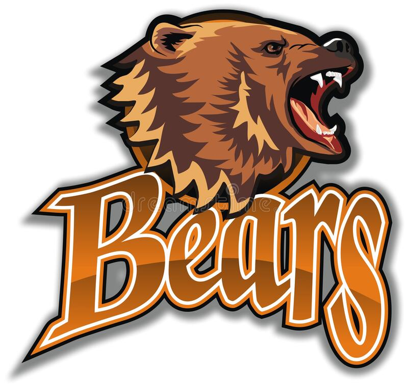 Emblem of the team Bears. royalty free stock photos