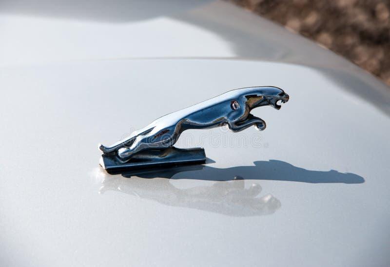 Emblema de Jaguar del metal imagen de archivo libre de regalías