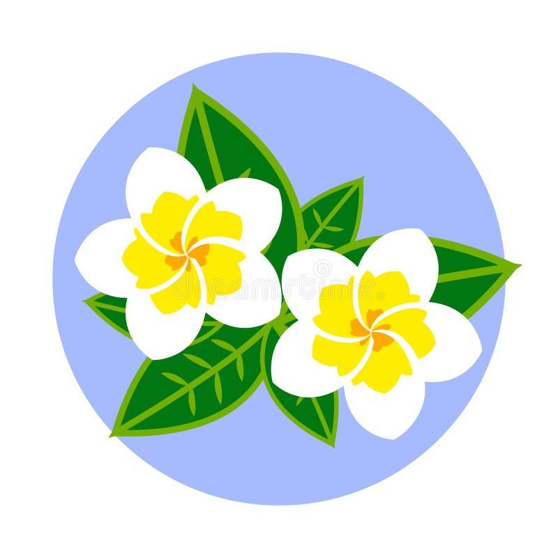 Emblema de la magnolia de Tailandia en el fondo redondo verde, ejemplo plano del vector ilustración del vector