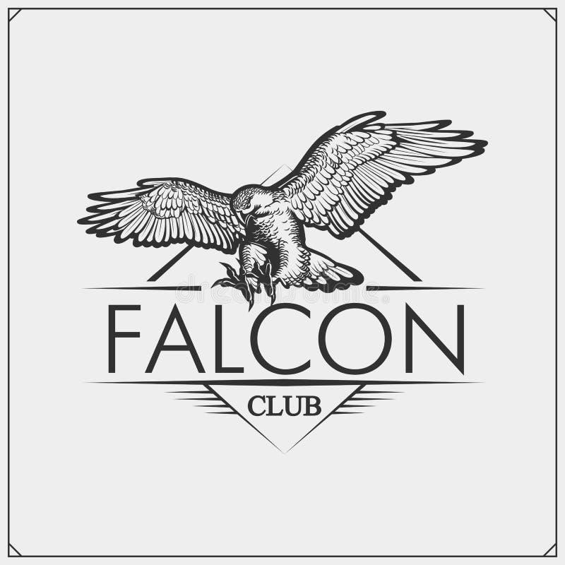 Emblema del club de deporte con la cabeza del halcón Diseño de la impresión para las camisetas stock de ilustración