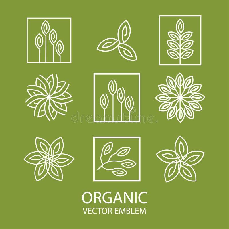 Emblema organico astratto stabilito di vettore, monogramma del profilo, simbolo del fiore illustrazione vettoriale