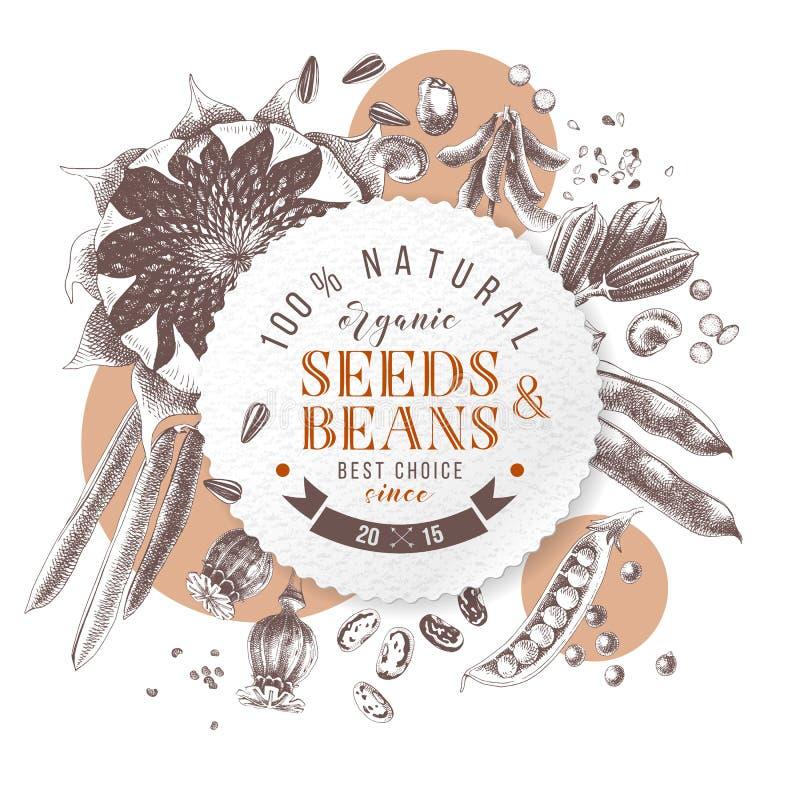 Emblema redondo de las semillas y de las habas sobre las plantas dibujadas mano ilustración del vector