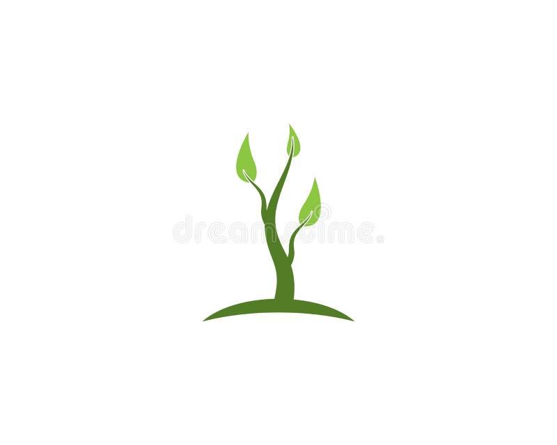 Emblemen van de groene ecologie van het boomblad stock illustratie